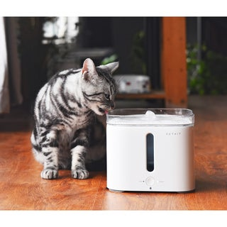 Petkit Eversweet Acrylic Smart Pet Fountain Waterer