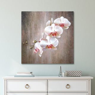 Portfolio Canvas Decor Orchid Bloom Wrapped Canvas Wall Art