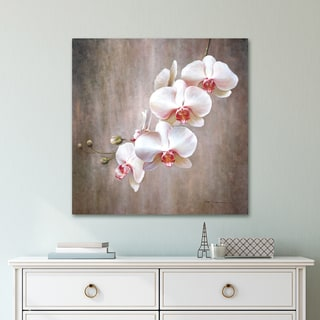 Portfolio Canvas Decor Orchid Bloom Wrapped Canvas Wall Art - White