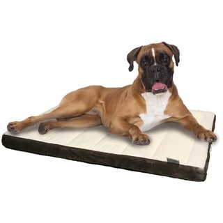 Animal Planet Channel Brown Memory Foam Dog Bed