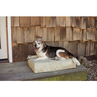 Snoozer Outlast Palmer Heating/Cooling Dog Bed