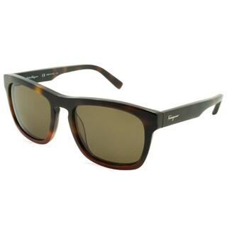 Ferragamo Sunglasses - SF789S / Frame: Havana and Red Lens: Brown