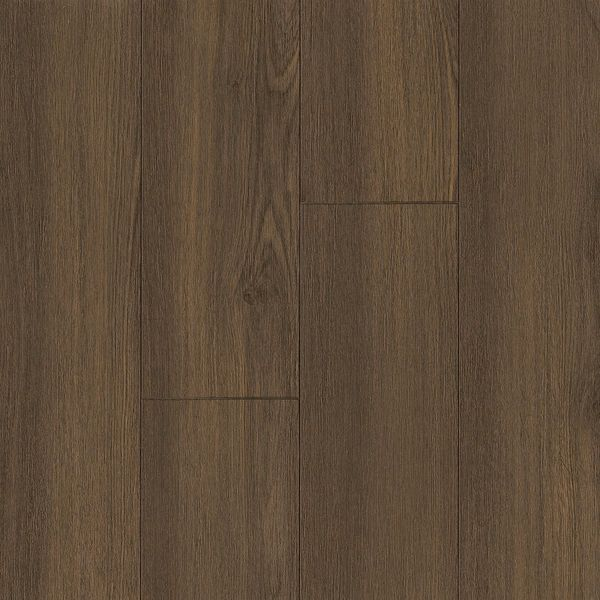 Shop Armstrong Premier Classics Laminate Flooring Pack 213 Square