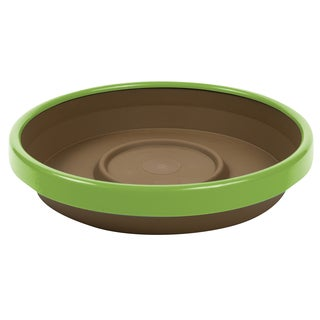 Bloem Terra Chocolate and Honey Dew Two-tone 8-inch Planter Saucer