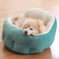 Best Friends by Sheri OrthoComfort Deep Dish Cuddler Ilan Dog Bed