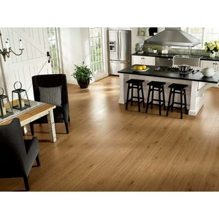 Armstrong Rustics Premium Laminate Flooring (18.78-square Feet Per Case)