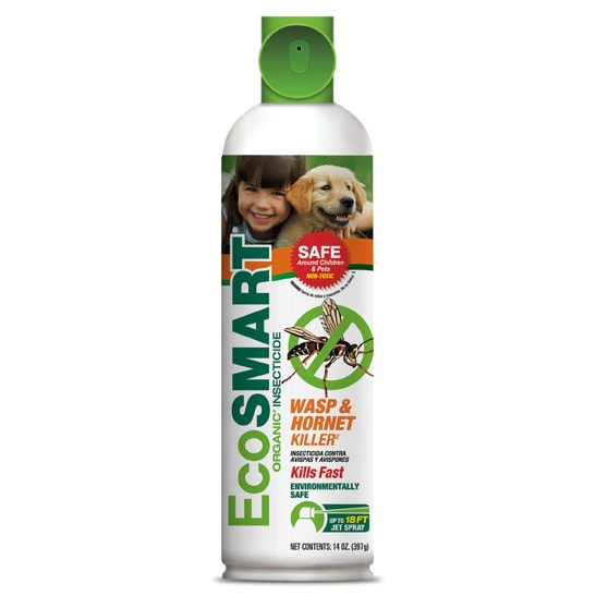 KITTRICH CORP. EcoSmart Organic 14-Ounce Wasp and Hornet ...