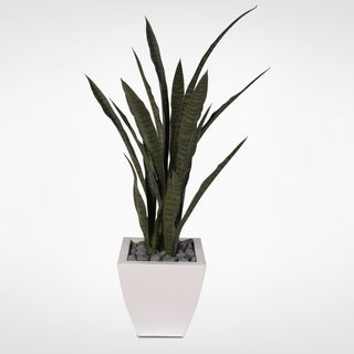 Artificial Sanseveria Plant with Real Rocks in White Zinc Metal Pot