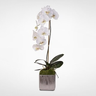 White Real Touch Silk Phalaenopsis Orchid in Metal Pot