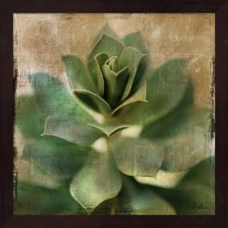 Patricia Pinto 'Succulent I' Mahogany Framed Art