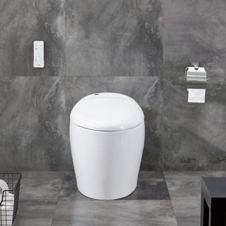 Buy Bidets Online At Overstock Our Best Toilets Deals
