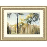 Framed Art Print 'Aspen Reverie' by Julia Purinton 45 x 34-inch