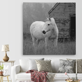 'Morning Pasture' Canvas Premium Gallery-wrapped Wall Art