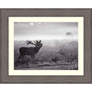 Framed Art Print 'Morning Call (Elk)' by Joe Reynolds 34 x 28-inch