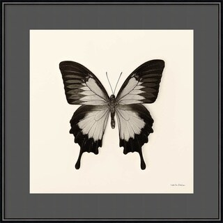 Framed Art Print 'Butterfly III BW Crop' by Debra Van Swearingen 16 x 16-inch