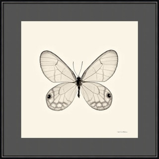 Framed Art Print 'Butterfly I BW Crop' by Debra Van Swearingen 16 x 16-inch