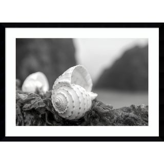 Framed Art Print 'Rodeo Beach Shells 1' by Alan Blaustein 29 x 21-inch