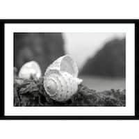 Framed Art Print 'Rodeo Beach Shells 1' by Alan Blaustein 29 x 21-inch