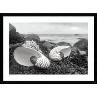 Framed Art Print 'Rodeo Beach Shells 2' by Alan Blaustein 29 x 21-inch