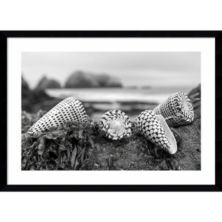 Framed Art Print 'Rodeo Beach Shells 3' by Alan Blaustein 29 x 21-inch