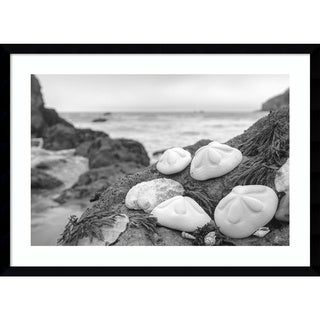 Framed Art Print 'Rodeo Beach Shells 4' by Alan Blaustein 29 x 21-inch
