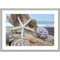Framed Art Print 'Rodeo Beach Shells 7' by Alan Blaustein 30 x 22-inch
