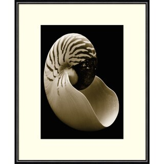Framed Art Print 'Nautilus' by Sondra Wampler 11 x 14-inch