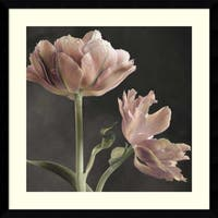 Framed Art Print 'Tulip II' by Sondra Wampler 23 x 23-inch