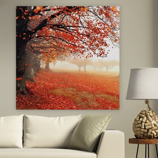 'All for Show' Premium Gallery Wrapped Canvas (4 Sizes Available)