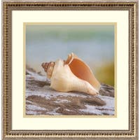 Framed Art Print 'Shell & Driftwood IV' by Donna Geissler 19 x 19-inch