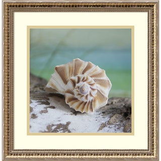 Framed Art Print 'Shell and Driftwood I' by Donna Geissler 18 x 18-inch