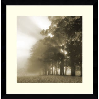 Framed Art Print 'Misty Forest' by Steven Mitchell 17 x 17-inch