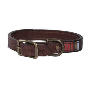 Pendleton Acadia National Park Explorer Collar