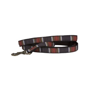 Pendleton Acadia National Park Hiker Pet Leash