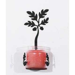 Acorn Black Wrought Iron Large Jar Sconce