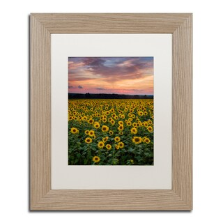 Michael Blanchette Photography 'Sunflowers' Matted Framed Art