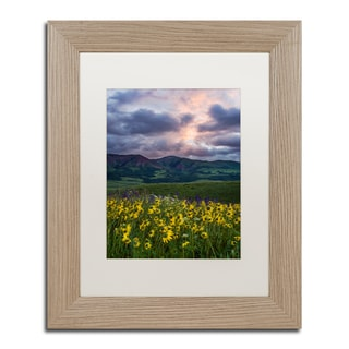 Michael Blanchette Photography 'Awakening' Matted Framed Art