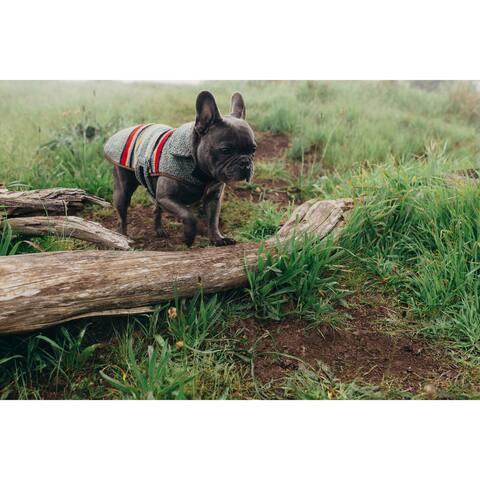 Pendleton Yakima Camp Heather Green Dog Coat