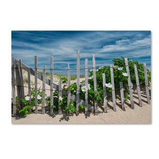 Michael Blanchette Photography 'White Beach Roses' Canvas Art