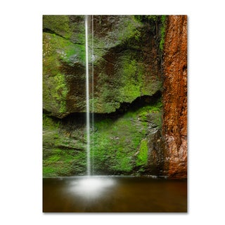 Michael Blanchette Photography 'Moss and Rust' Canvas Art