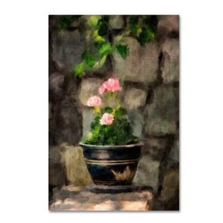 Lois Bryan 'Sun Kissed Pink Geraniums' Canvas Art