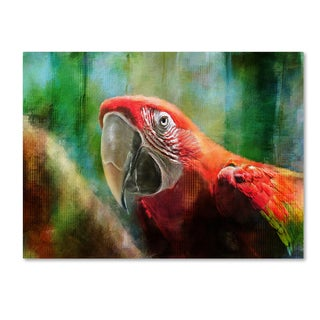 Lois Bryan 'Green Winged Macaw' Canvas Art