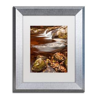 Michael Blanchette Photography 'Autumn Swirly' Matted Framed Art