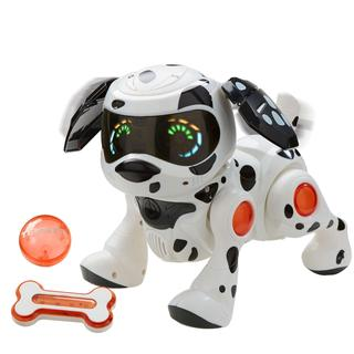Tekno Dalmatian Puppy with Bone and Ball