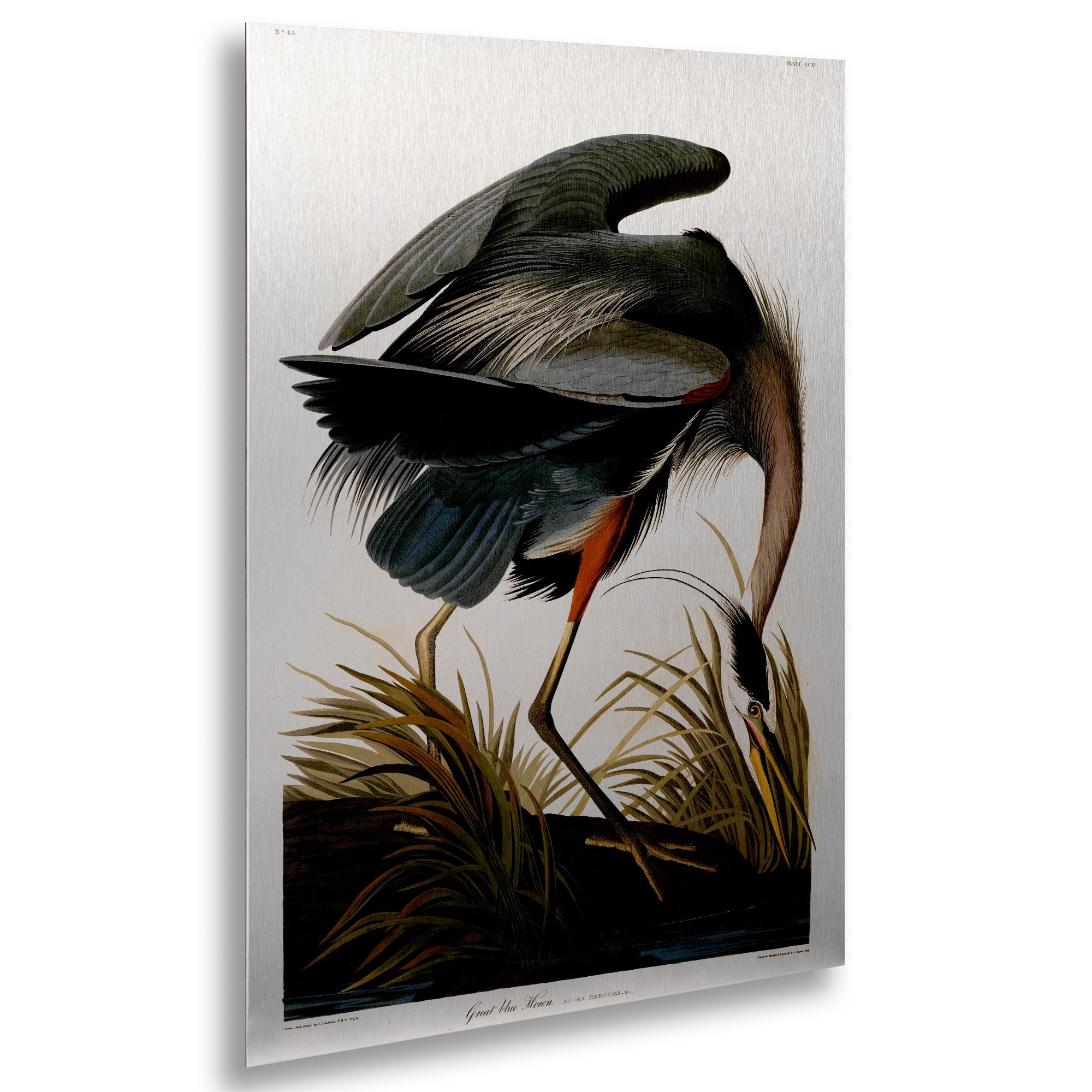 Trademark John James Audubon 'Great Blue Heron' Floating ...