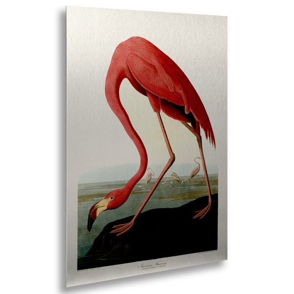 John James Audubon X27 American Flamingo Floating Brushed