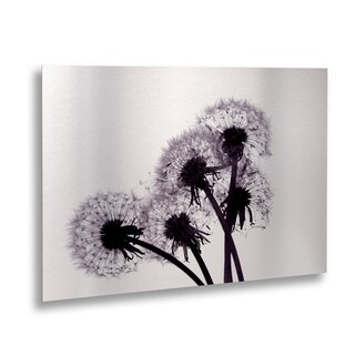 Beata Czyzowska Young 'Bunch of Wishes' Floating Brushed Aluminum Art