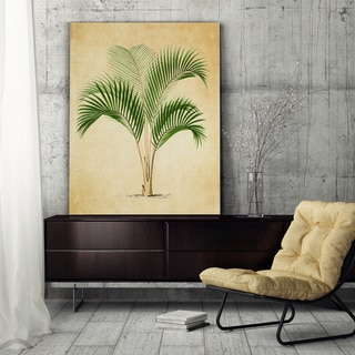 Vintage Palmary ( Palm Tree ) Sketch III - Premium Gallery Wrapped Canvas