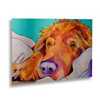 Pat Saunders-White 'Snoozer King' Floating Brushed Aluminum Art