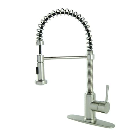 S-Series Residential Spring Coil Brushed Nickel Kitchen Faucet with Deckplate